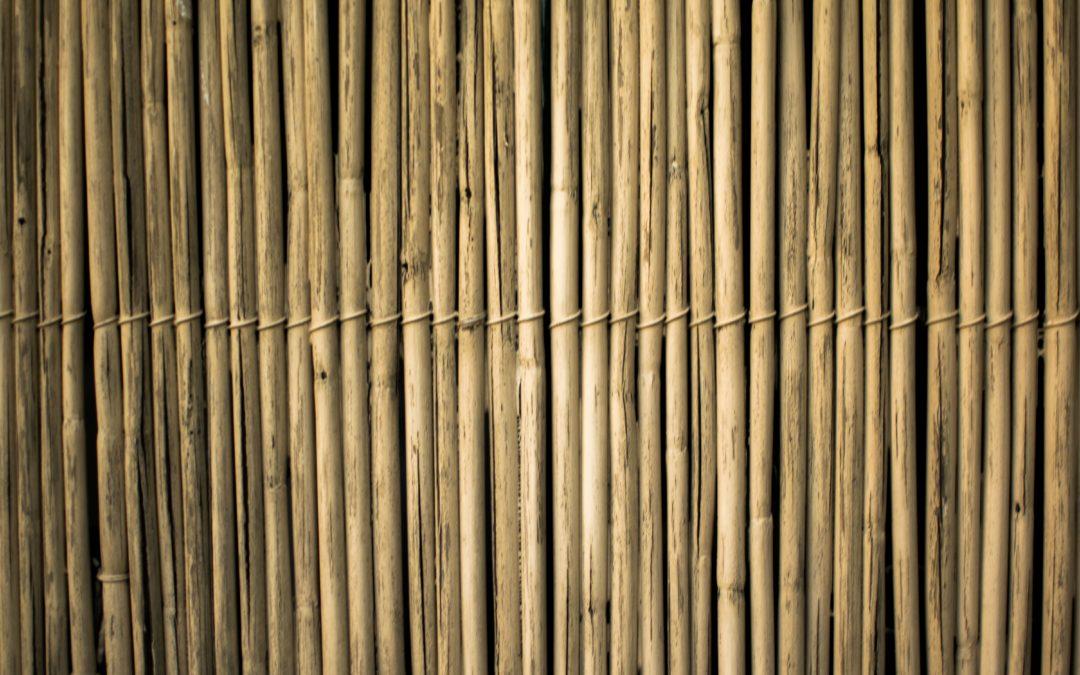 Bamboe Jaloezieën