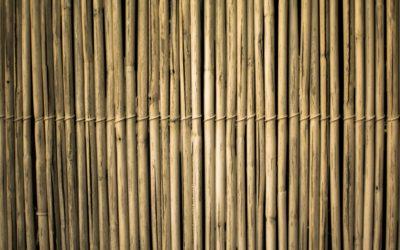 Bamboe jaloezieën, alle voordelen op een rijtje