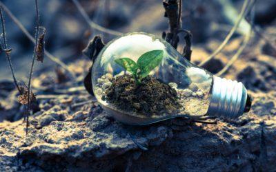 De opkomst van groene energie in het dagelijks leven