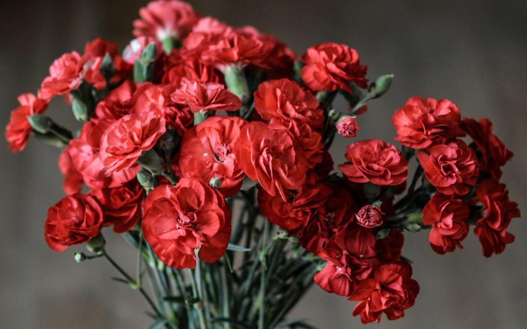 Op deze manier houd je jouw bosje bloemen langer mooi en fris